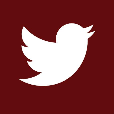 website-twitter
